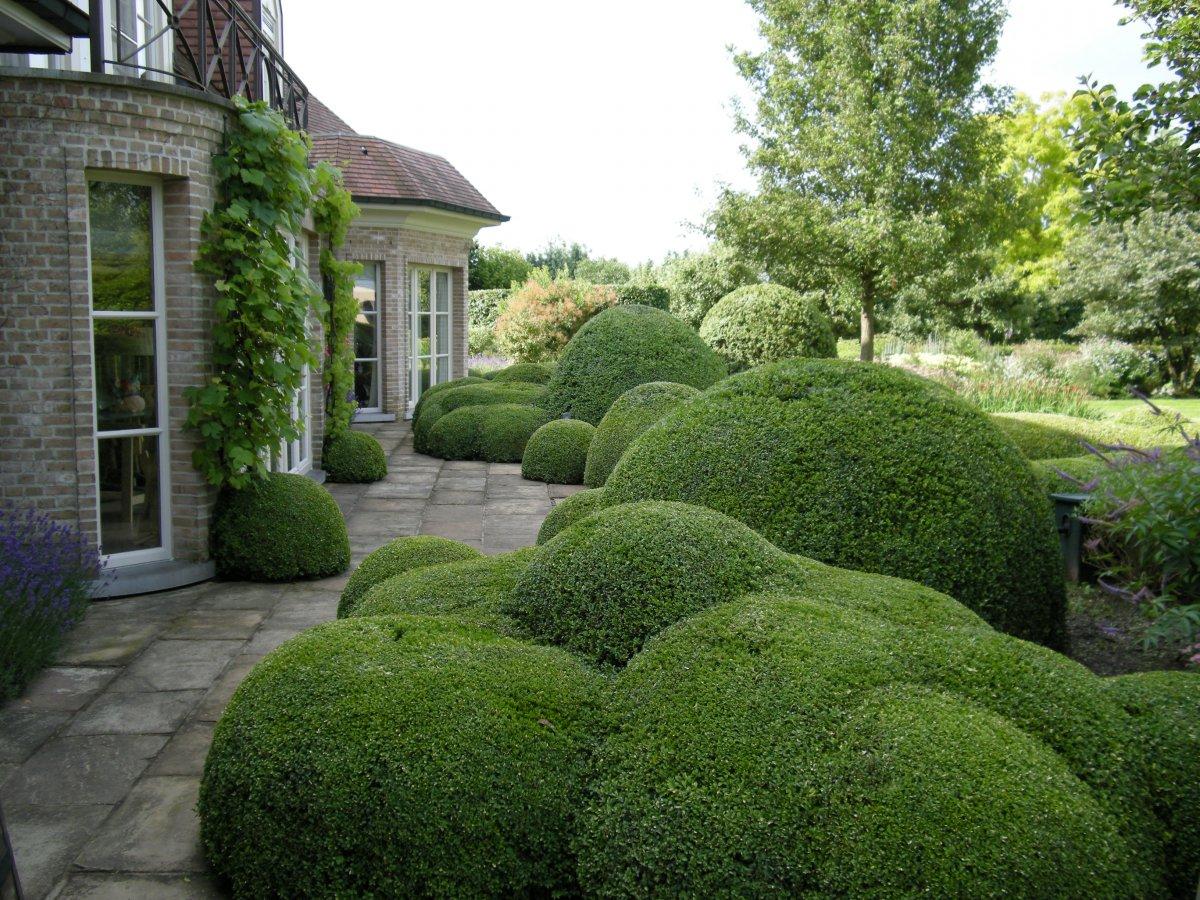 Totaalproject strakke tuin